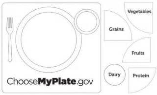 my plate template image gallery myplate blank