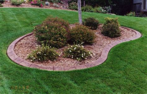 inexpensive backyard landscaping ideas inexpensive landscaping ideas beautiful inexpensive