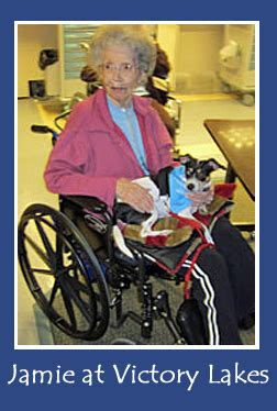 victory lakes nursing home pet therapy not just for dogs