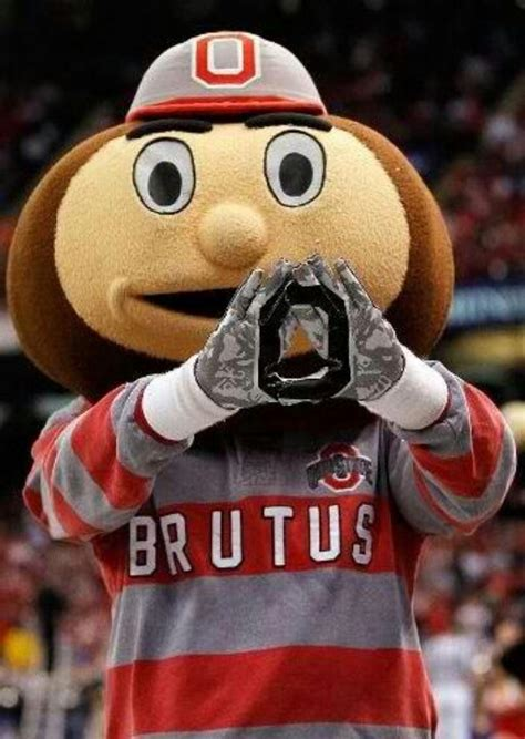 555 football facts to 1000 images about brutus buckeye on