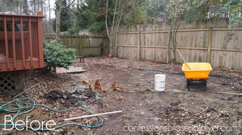 what to do with my backyard my gardens confessions of a serial do it yourselfer