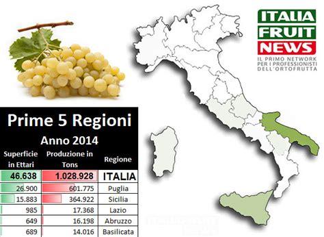 uva da tavola italia report uva da tavola produzione export mercati di