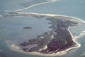 honeymoon island state recreation area