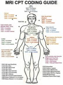 Mri cpt codes guide pic with body jpg