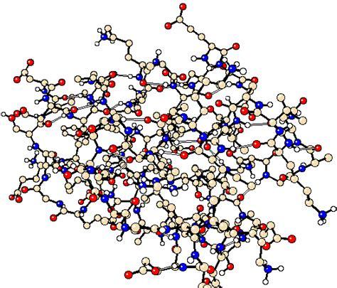 protein molecule diagram why we need protein no excuses health