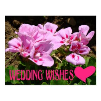 Wedding Wishes Postcards by Wedding Wishes Post Card Templates Wedding Wishes Postcards