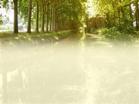 background images of nature for powerpoint presentation in