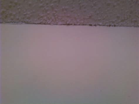 Ceiling And Wall Cracks by Cracks Between Ceiling Corner