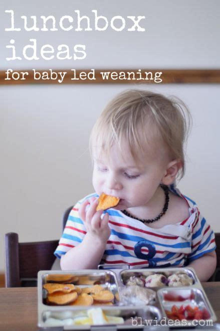 baby led weaning ab wann lunchbox ideas 1 for baby led weaning this is the