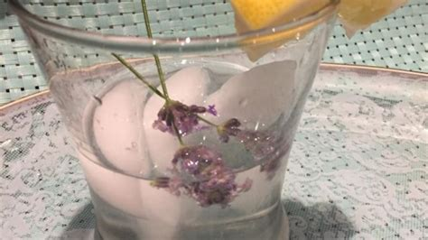 vodka tonic lemon lavender lemon vodka tonic recipe allrecipes com