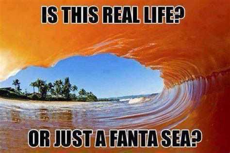 rock the boat puns beach puns punpedia