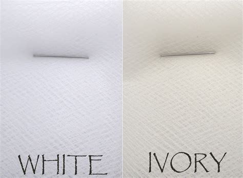 the color ivory ivory color vs white www pixshark images galleries