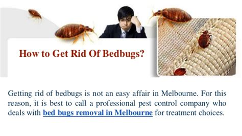 cheapest way to get rid of bed bugs cheapest way to get rid of bed bugs image titled kill