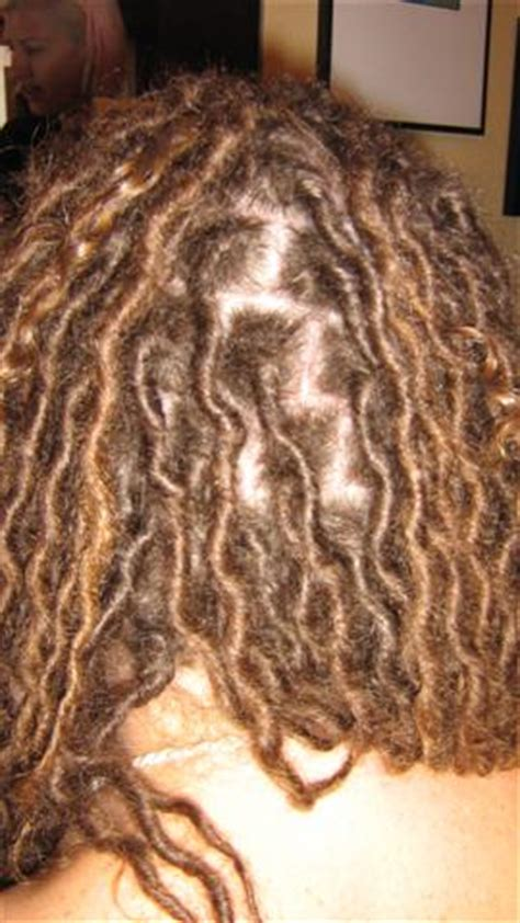 sectioning hair for dreads dread perm dreadlocks and alternative hairstyles