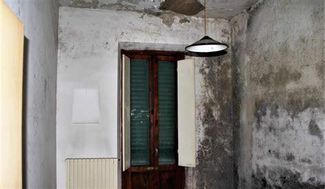 muffa muri interni come togliere la muffa dai muri crea srl