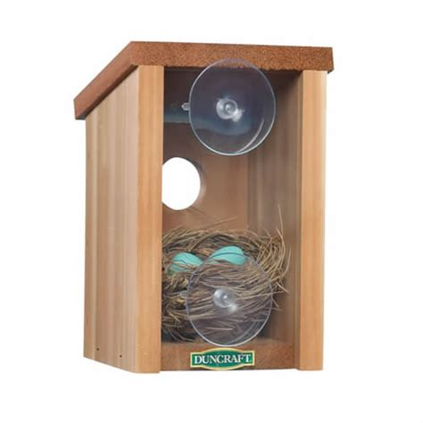 window bird houses duncraft com duncraft 1558 window view bird house