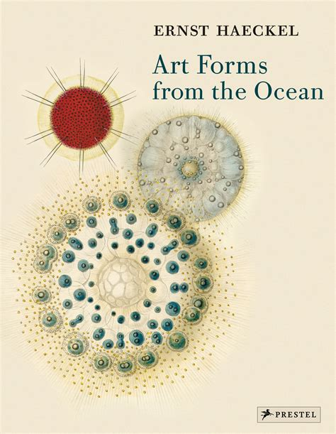 libro art forms from the haeckel art forms from the ocean prestel publishing paperback