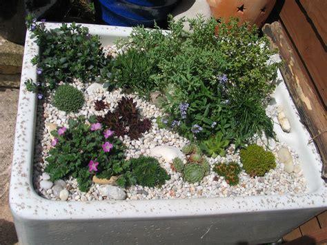 garden sink ideas sink garden alpine plants sinks in the garden