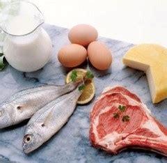 alimentos con mas prote nas proteinas