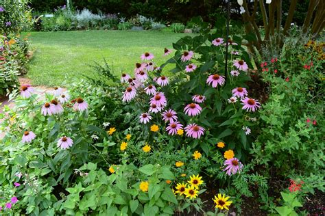 plant bed flower bed pictures beautiful flowers