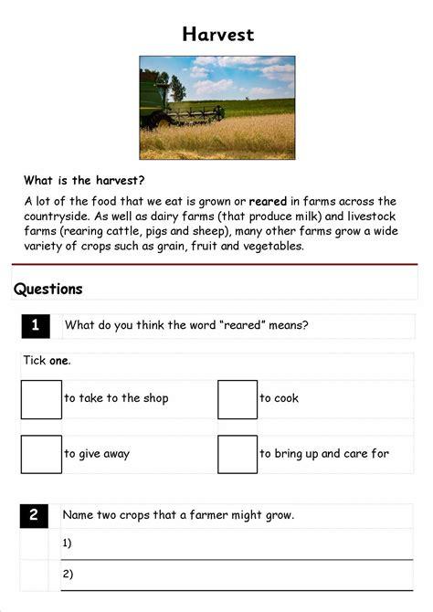 reading comprehension test ks1 ks1 reading comprehension boxfirepress