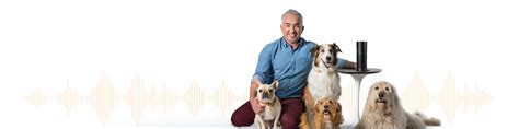audible for dogs audiobooks for dogs audible