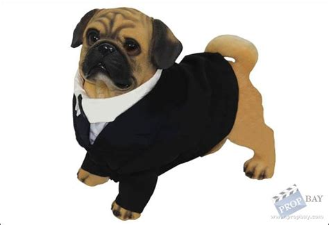 mib pug name frank the pug agency suit wardrobe from in black ii 2002
