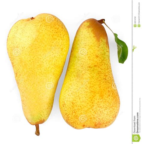 12 best images about pear two ripe yellow pears on white background close up stock