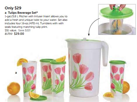 Tupperware Infused Water as a tupperware consultant the is a self sponsored prize
