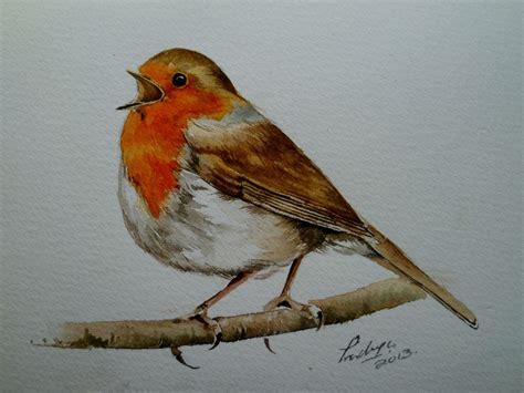 what color are robins watercolour robin search robin