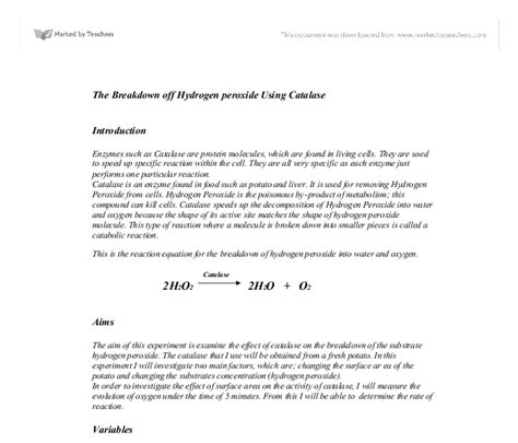 Research Papers On Chitin Degrading Enzymes by Enzyme Coursework Evaluation Courseworkpaperboy Web Fc2