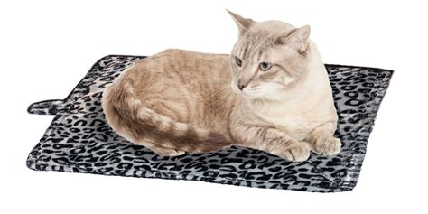 Mat Cat by Keep Your Beloved Warm This Winter On A Heated Mat