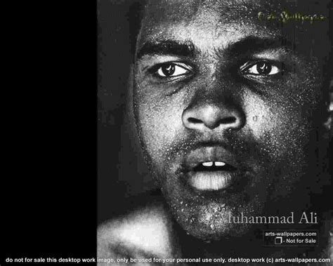 muhammad ali biography free download muhammad ali 02 wallpaper boxing sport wallpaper