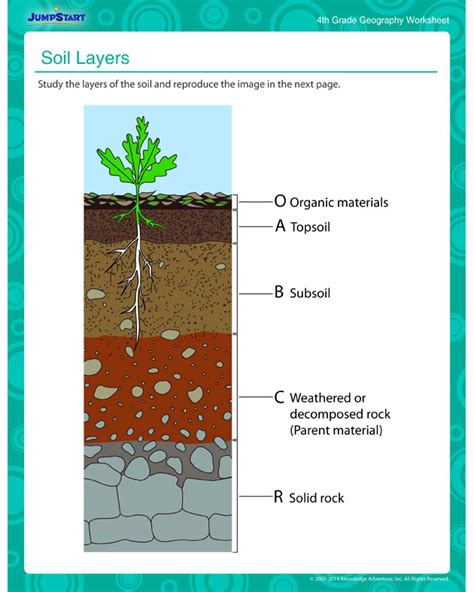layers of the soil diagram soil layers worksheet free geography printable worksheet