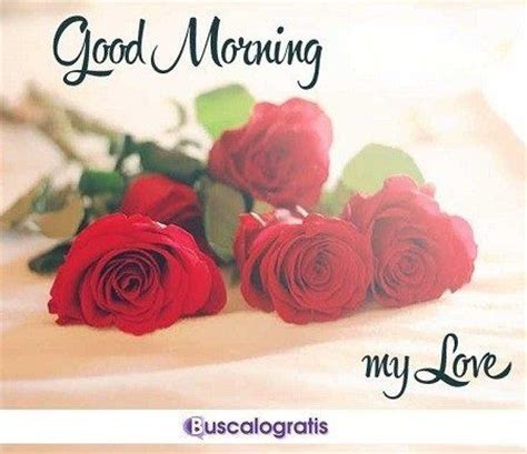imagenes hermosas de good morning frases de buenos d 205 as de amor buscalogratis es