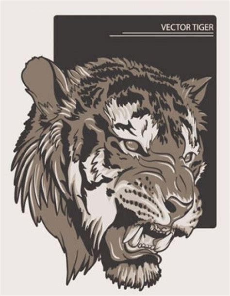 stock illustrations tiger vectors tattoos pinterest