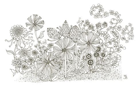 drawing of garden print flower garden giclee in black and white from by