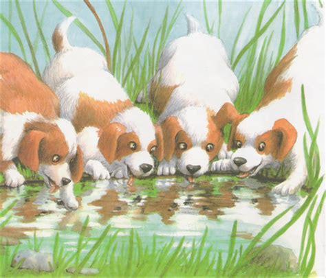 los perros magicos de 0892391294