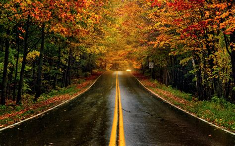 best fall colors in usa chart this year s fall foliage in the us with this