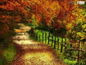 Pics photos beautiful autumn scenery