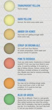 warning signals in your urine color health pinterest