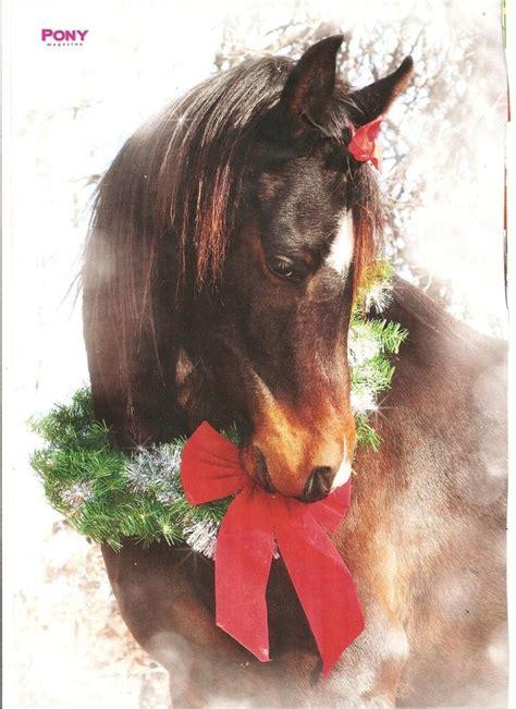horse merry christmas horses pinterest merry christmas art  christmas