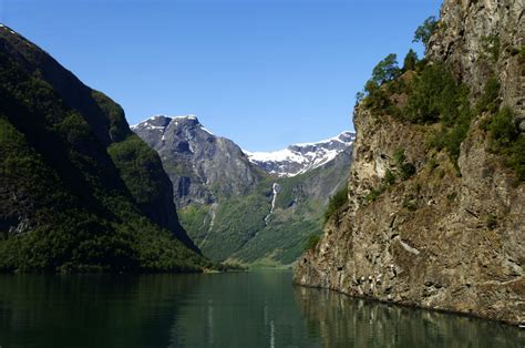 fjord jobs norwegian delicacies foreigners can t stomach the local