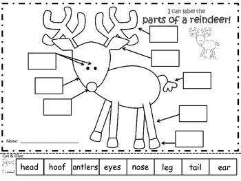 printable reindeer parts a reindeer label the parts of a reindeer by regina davis