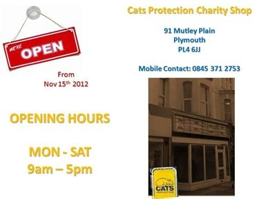 plymouth shops opening times cats protection news charity shop opening times