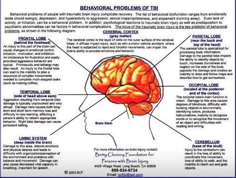 list of sections affected behavioral problem associated with tbi identified by lobe