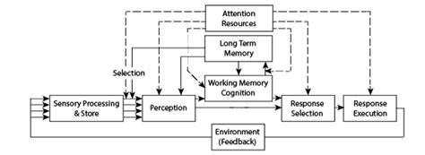 human information processing ergonomicsblog