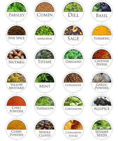 spice label templates 25 best ideas about spice labels on spice jar