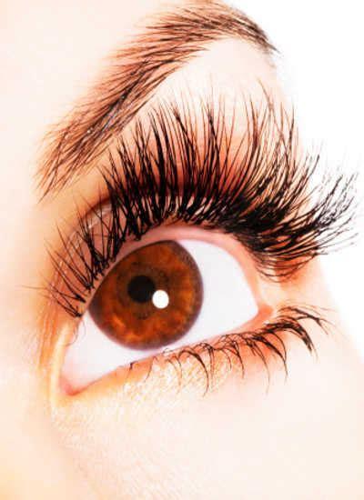 Eye Mate Vitamin Kesehatan Mata ingin mata sehat dan jernih makan saja ubi dan telur