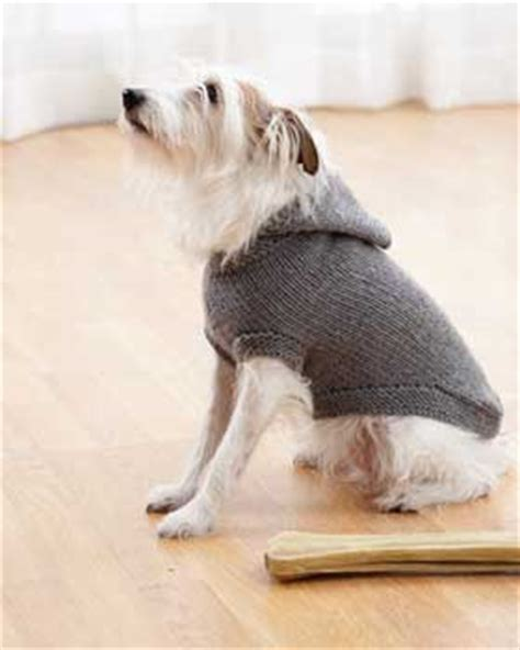 knitting pattern for coats for small dogs hooded coat favecrafts